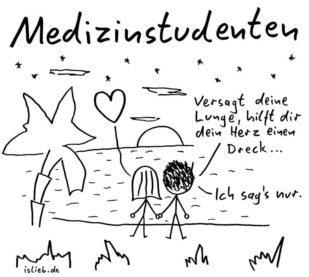 Medizinstudenten | Strichmännchen-Cartoon | is lieb? | Versagt deine Lunge, hilft dir dein Herz einen Dreck. Ich sag's nur. | Studium, Sonnenuntergang