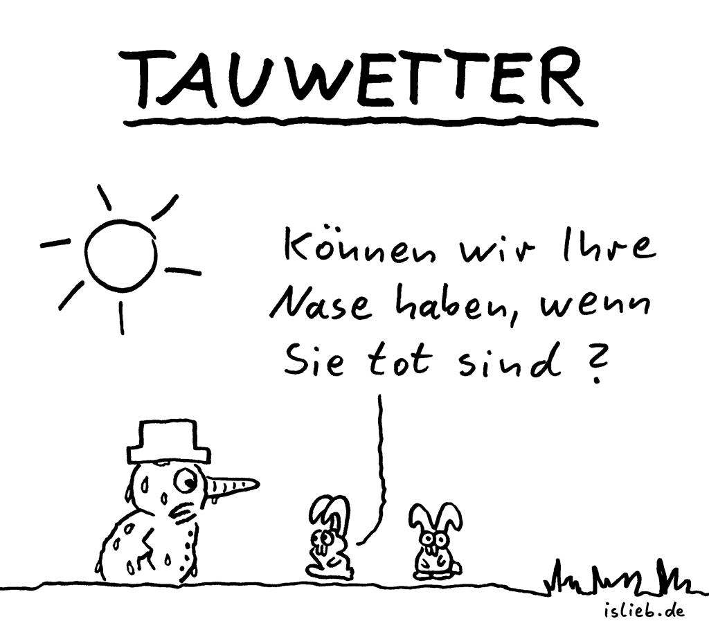 Tauwetter | Strichmännchen-Cartoon | is lieb? | Können wir Ihre Nase haben, wenn Sie tot sind? | Schneemann, Möhre, Karotte, Hasen, Häschen, Wetter