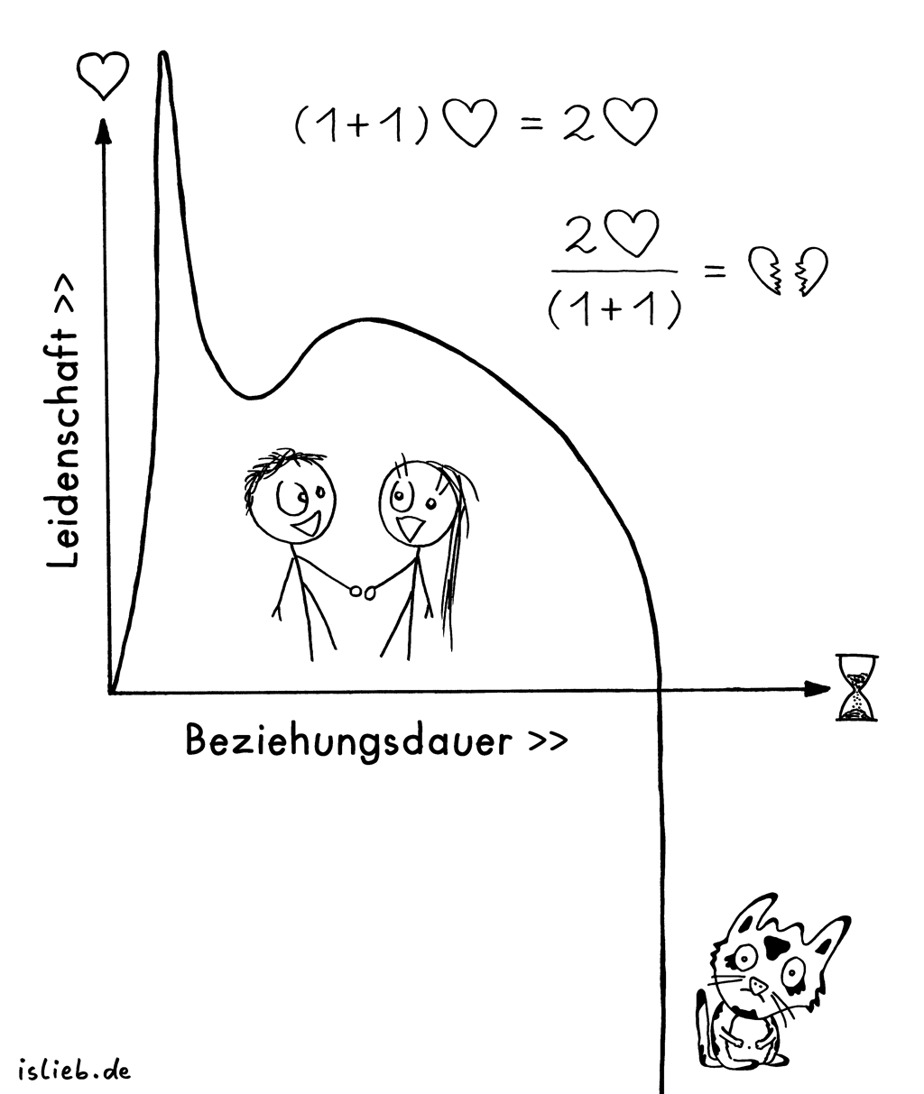 Beziehung | Analytischer Ansatz | is lieb? | Mathematik, Formel, Koordinatensystem, Liebe, Leidenschaft, Beziehung, Trennung, Bruch, Gleichung