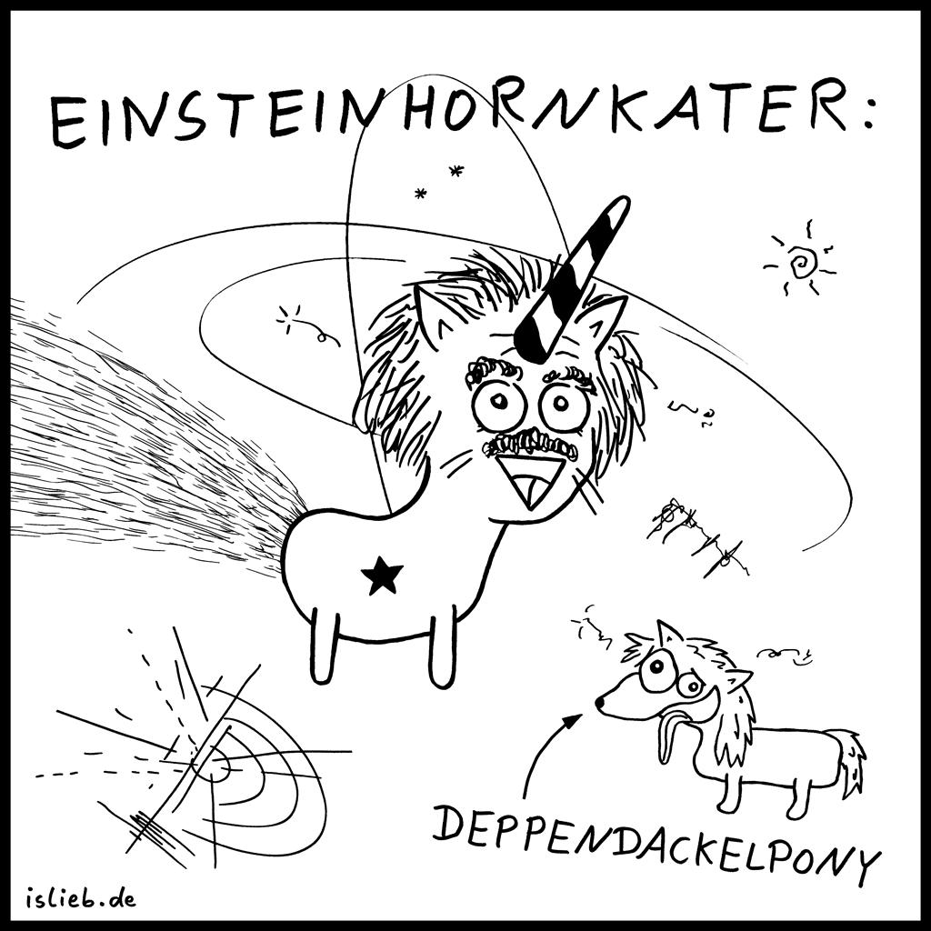 Einsteinhornkater | Einstein-Cartoon | is lieb? | Albert Einstein, Deppendackelpony, Katzen