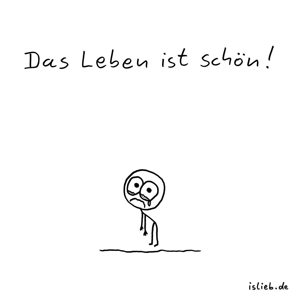 Schön | Optimismus-Cartoon | is lieb? | Das Leben ist schön! | Optimismus, traurig, Trauer, Pessimismus, weinen, rührend