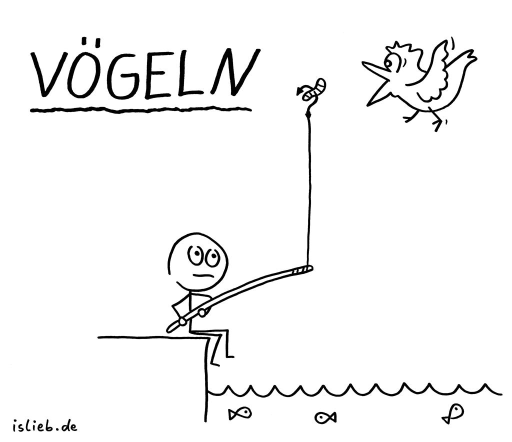 Vögeln | Strichmännchen-Cartoon | is lieb? | Vogel, angeln, fischen, Sex, FTW