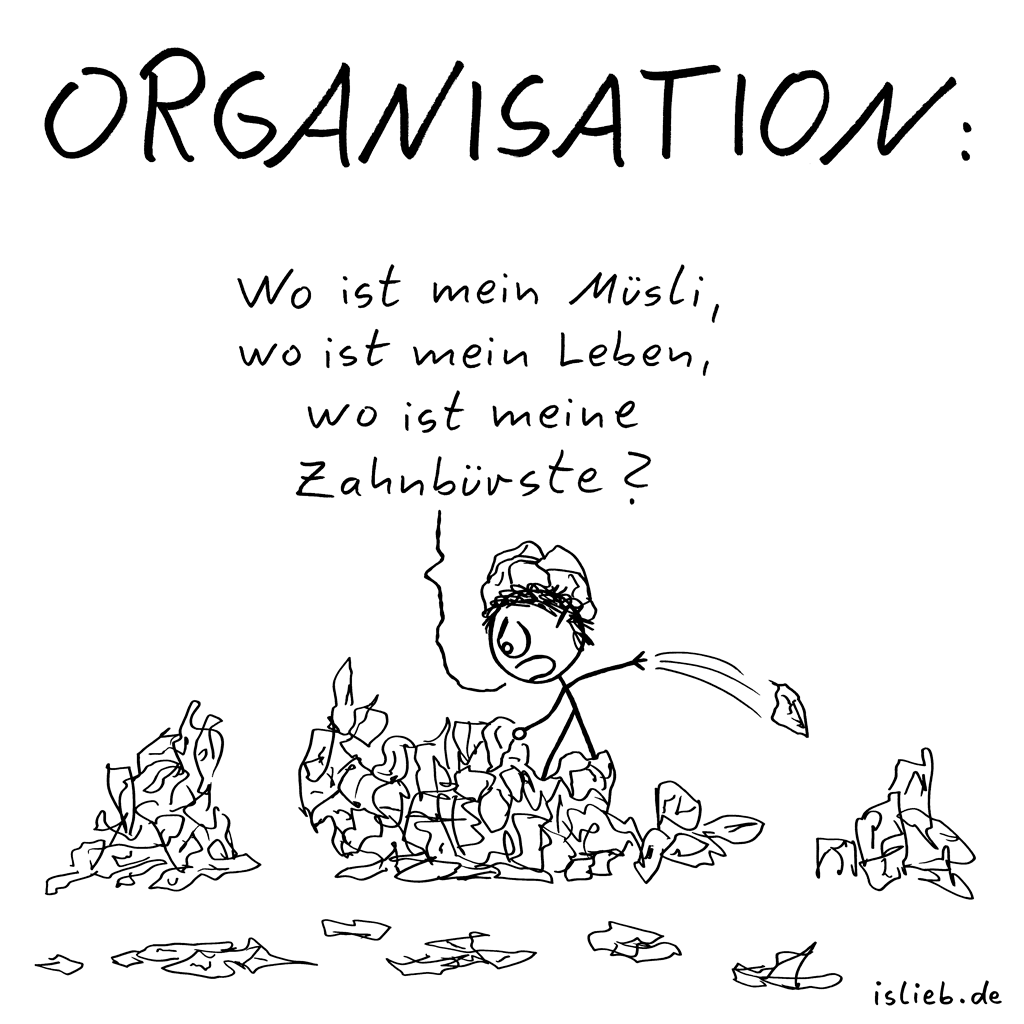 Organisatin | Chaos-Cartoon | is lieb?