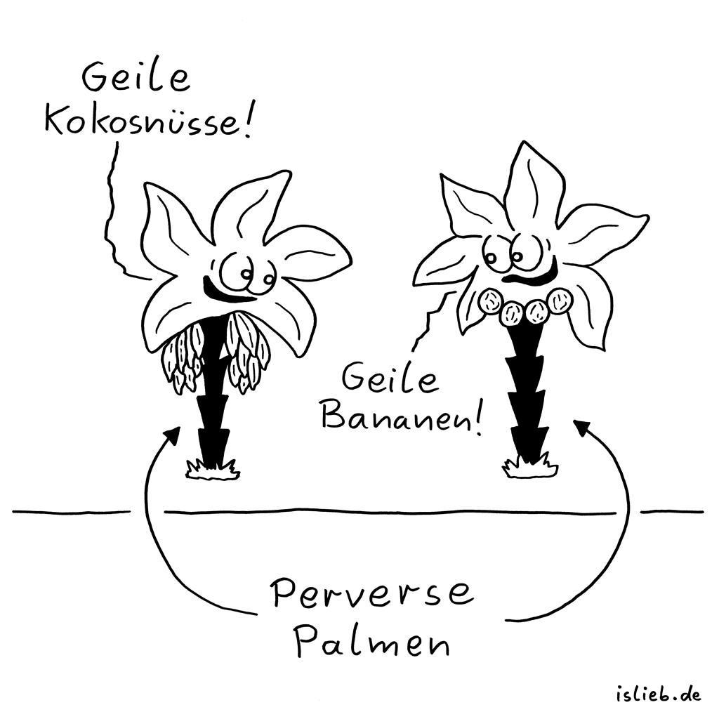 Palmen | Kokosnuss-Cartoon | is lieb? | Geile Kokosnüsse. Geile Bananen. Perverse Palmen. | Kokosnuss.