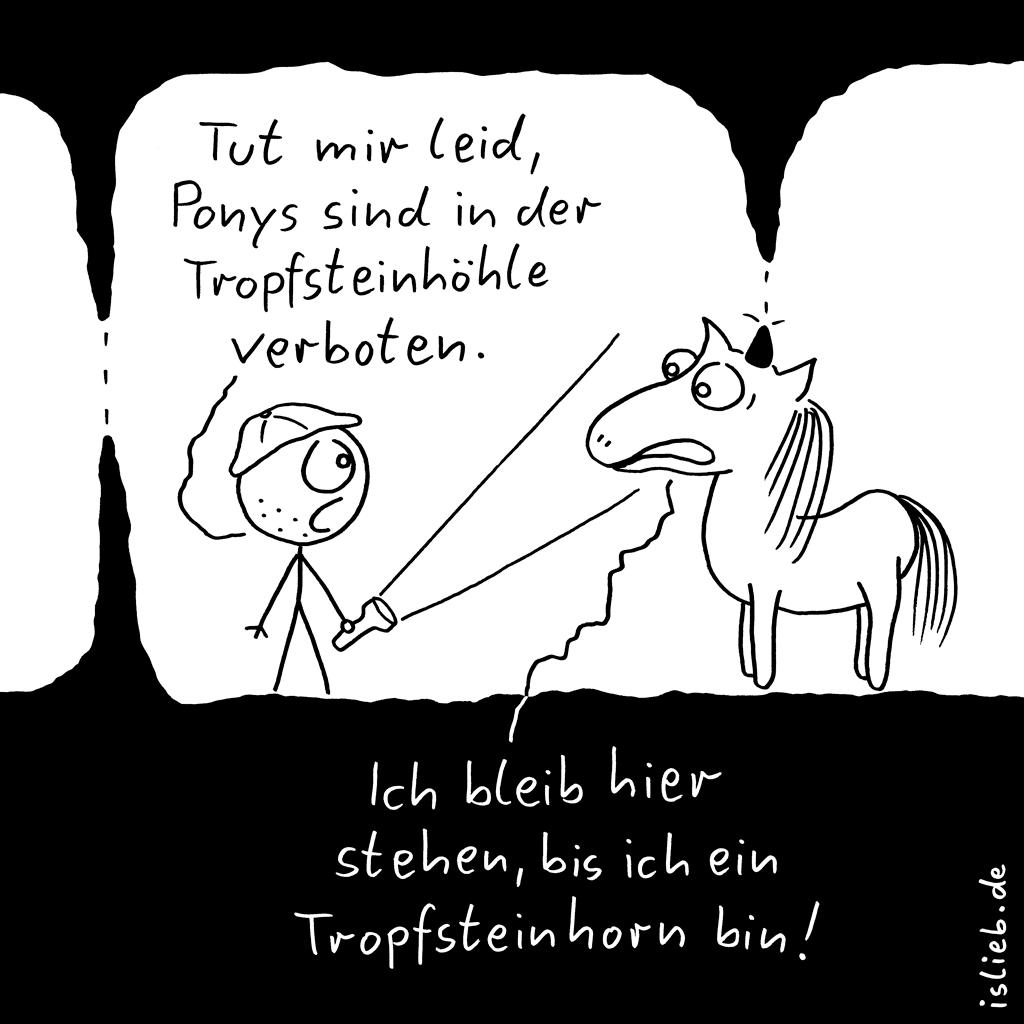 Durchhaltevermögen | Pony-Cartoon | is lieb? | Tut mir leid, Ponys sind in der Tropfsteinhöhle verboten. Ich bleib hier stehen, bis ich ein Tropfsteinhorn bin. | Einhorn, Einhörner