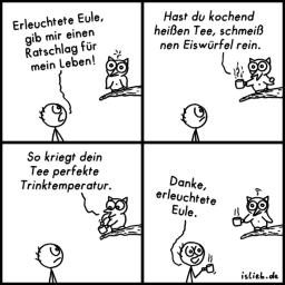 Eule | erleuchteter Comic | is lieb?