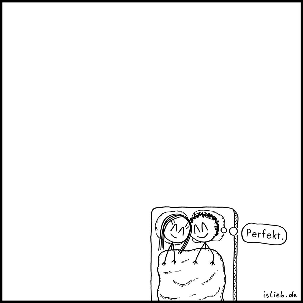 Perfekt | Strichmännchen-Comic | is lieb?