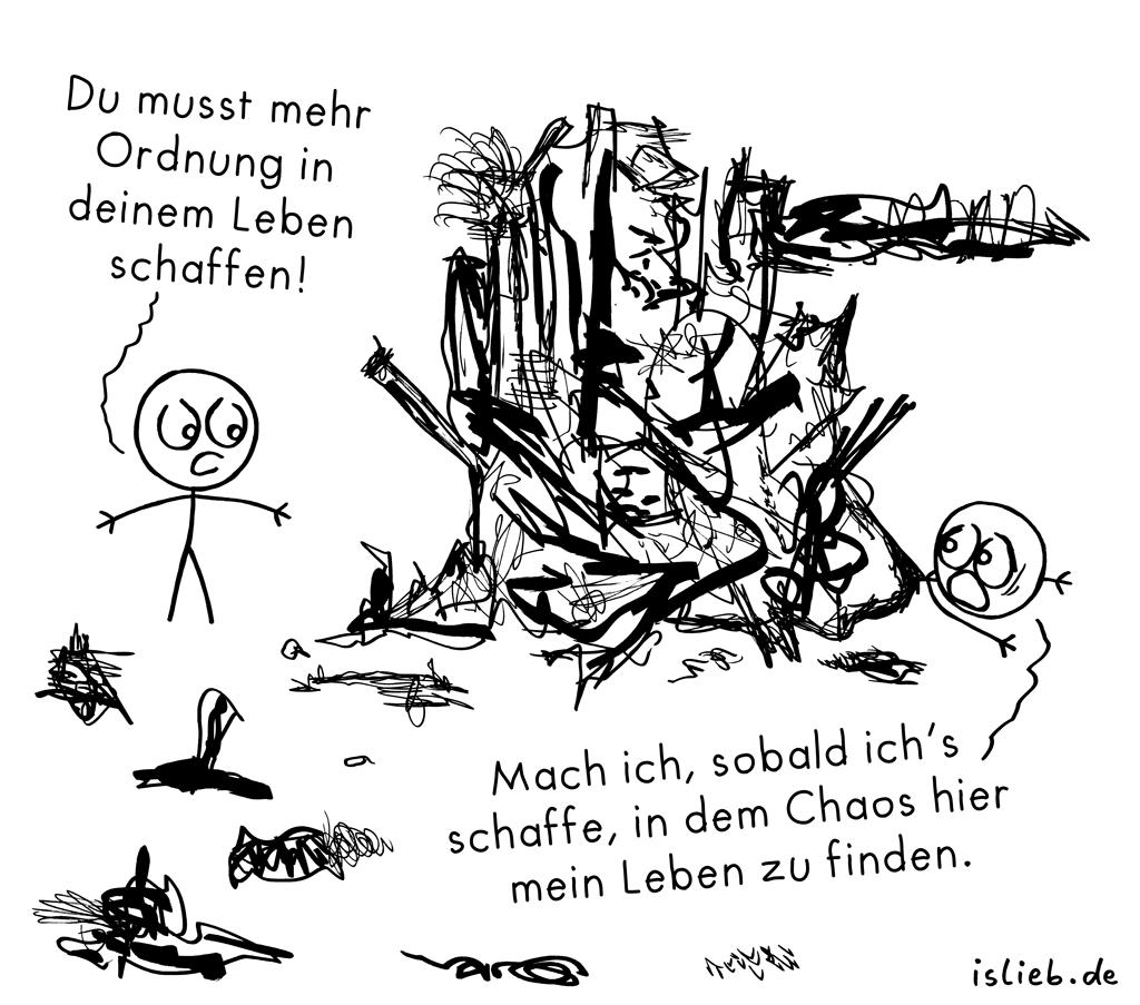 Mehr Ordnung | Chaos-Cartoon | is lieb?