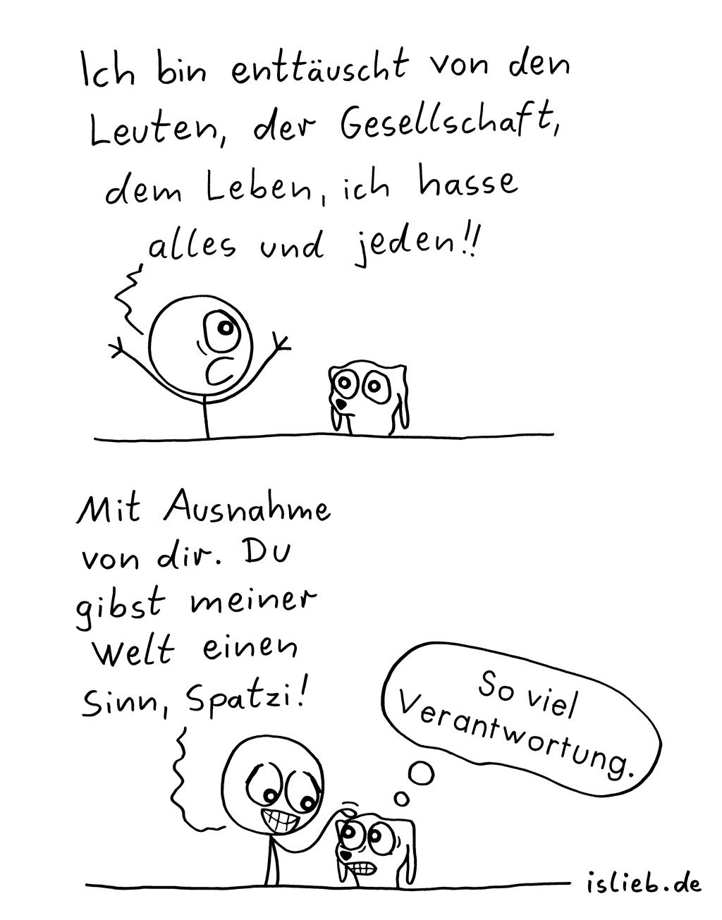 Enttäuscht | Strichmännchen-Comic | is lieb?