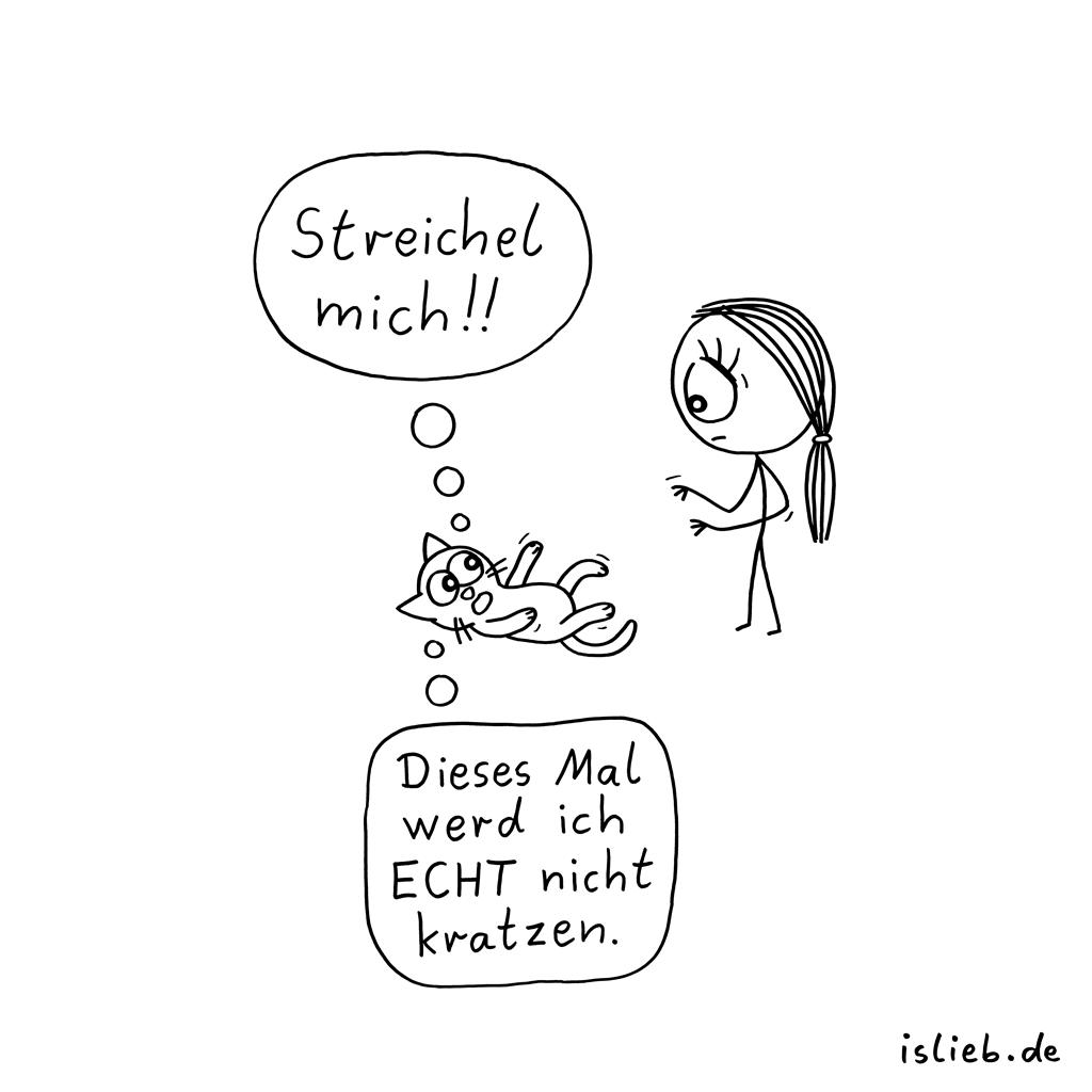 Katzenliebe   Miezen-Cartoon   is lieb?