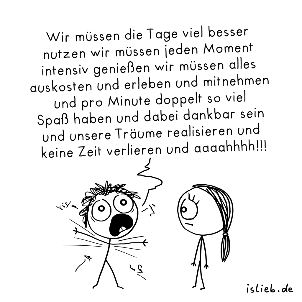 Carpe diem | Stress-Cartoon | is lieb?