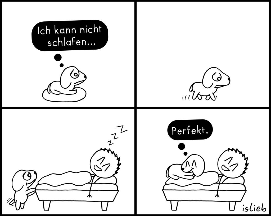 Nicht schlafen | Hunde-Comic | islieb