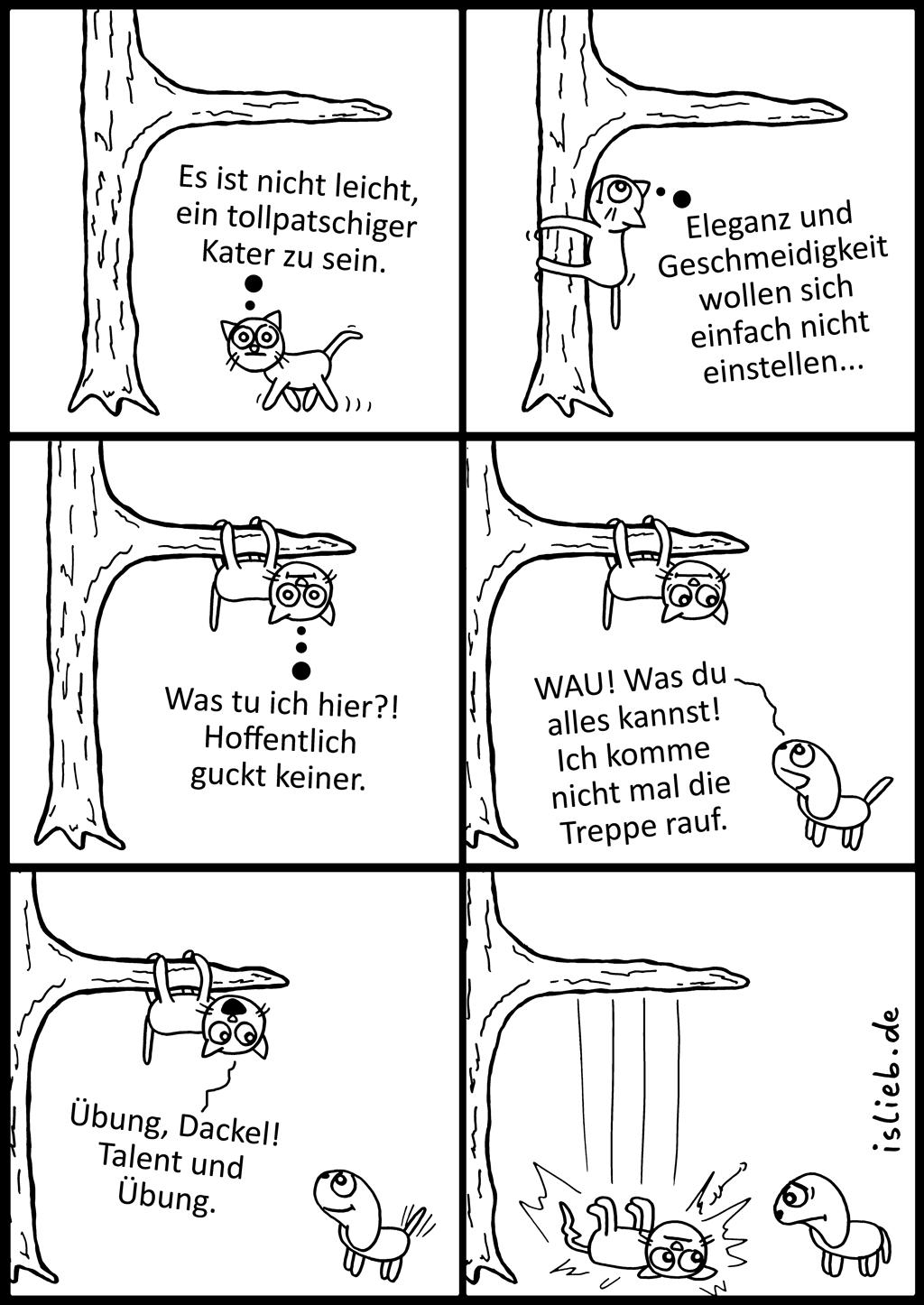 Übung | Kater-Comic | islieb