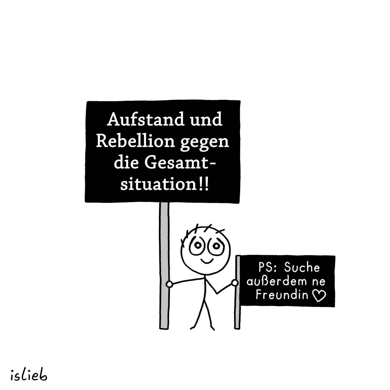 Schild, Schilder, Aufstand und Rebellion gegen die Gesamtsituation! PS: Suche außerdem ne Freundin.